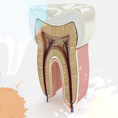 Endodonzia | Studio Dentistico Tonietti | Dentista a Brindisi